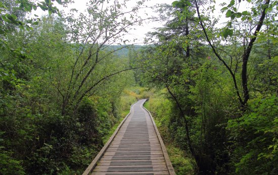 Mission, Canada: Walkway over the marsh
