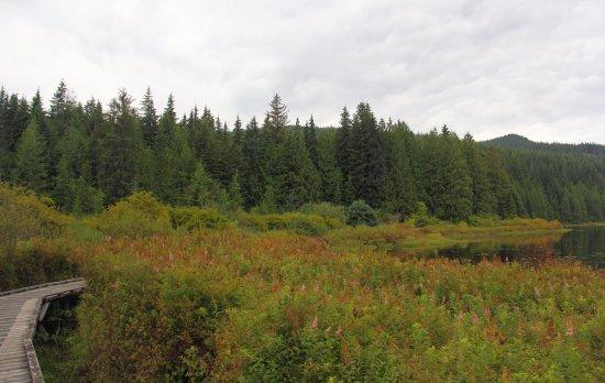 Mission, Canada: Walk around the lake