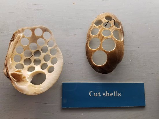 Dubuque, IA: button factories cut the shell blanks