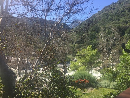 Buckeye Tree Lodge: View from Room 2