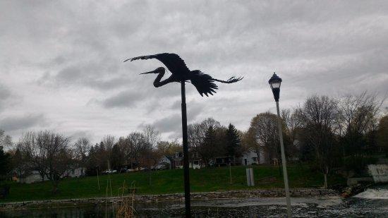 Gananoque, Kanada: Blue Heron