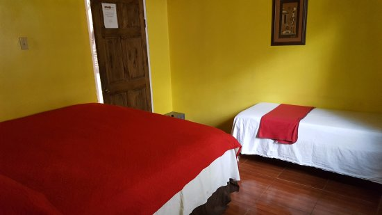 Reggae Hostel : Private room with shared bathroom