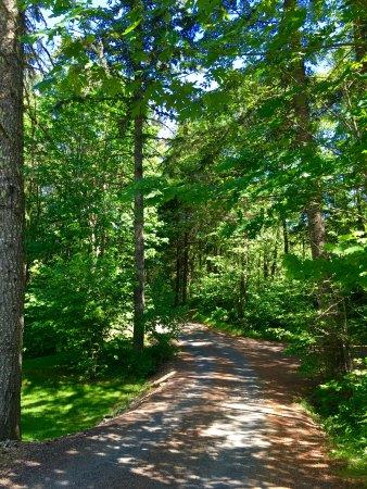 Timberlake Campground RV