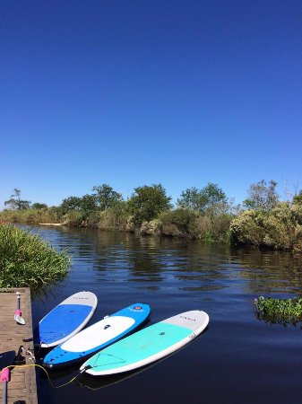 Hahnville, LA: SUP boards tied up at dock ready for the next lesson at bayou LaBranch