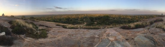 Wild Wings Safaris: photo7.jpg