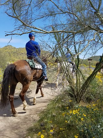 Cave Creek Trail Rides: Horse back riding