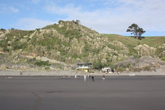 Ngarunui Beach: Looking from the water back to the beach.