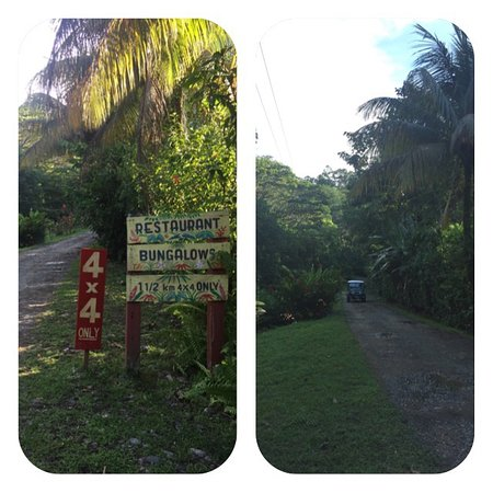 Samasati Retreat & Rainforest Sanctuary: Yes indeed the adventure starts with getting up to the hotel