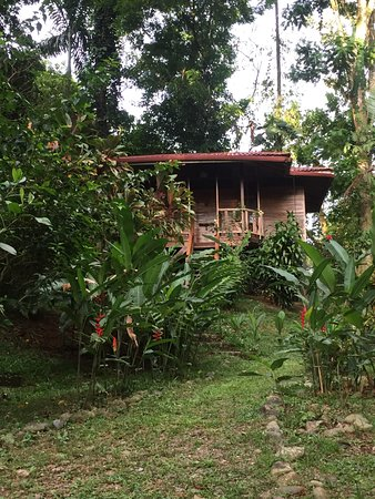 Samasati Retreat & Rainforest Sanctuary: The massage bungalow. Very private, yet open to the jungle