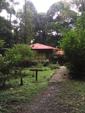 Samasati Retreat & Rainforest Sanctuary : Meditation hall were yoga classes are held