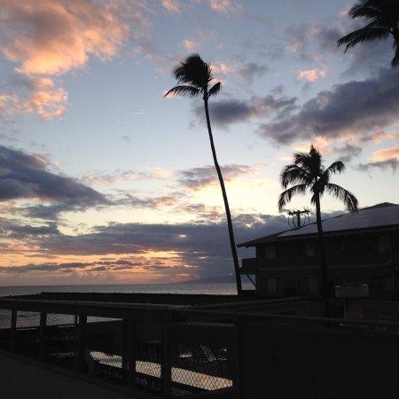 Shores of Maui: photo3.jpg