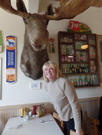 Hopland, CA: A big moose adorns one wall...