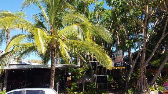Foto de Noosa Backpackers Resort