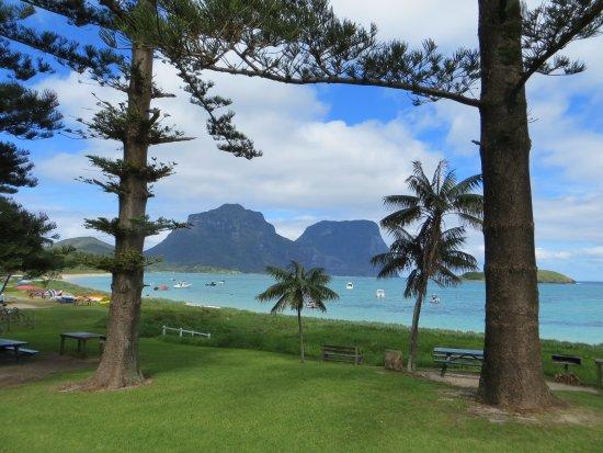 Arajilla Retreat - Lord Howe Island: Nearby area