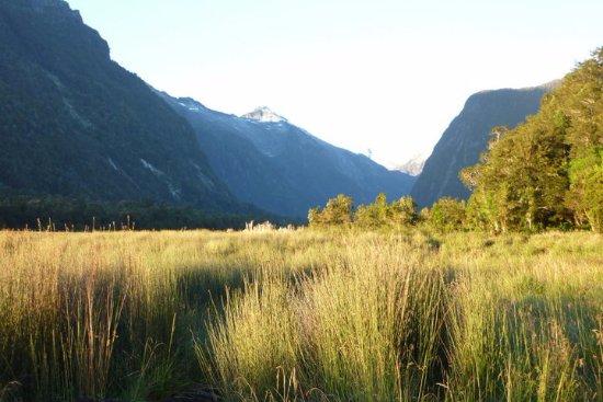 Hornopiren National Park