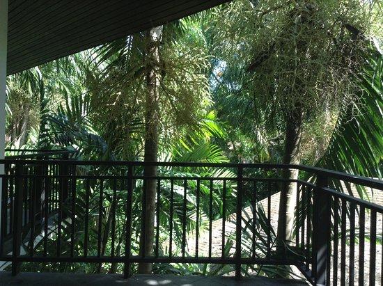 Nai Yang Beach Resort and Spa: From the Balacony of my room, early morning