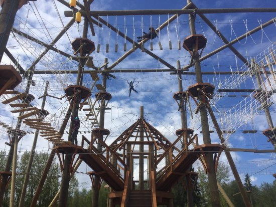 Everett, WA: Don't skip town without experiencing the thrills of this challenge ropes course!