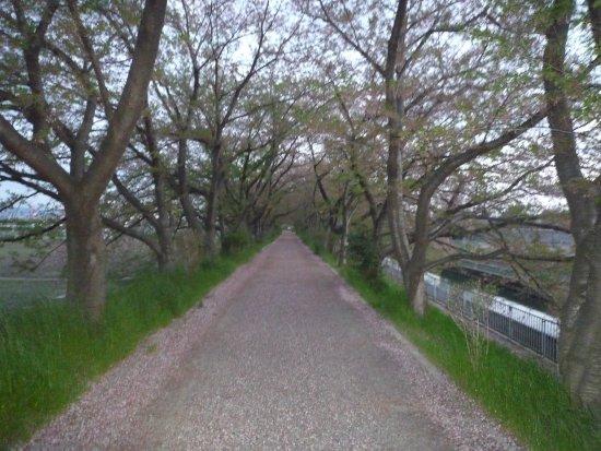 Tamagawa no Sato