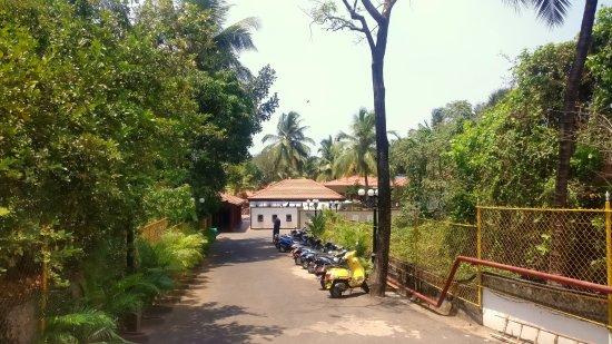 Leoney Resort: parking area