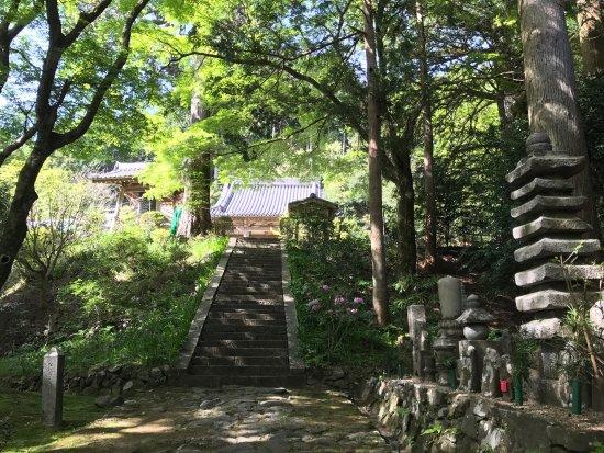 Otowasan Kannonji Temple: photo1.jpg