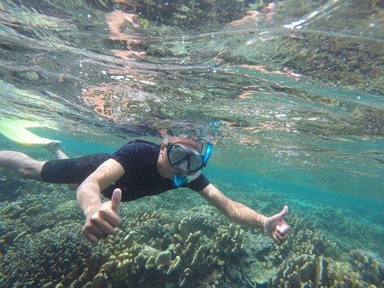 Острова Дераван, Индонезия: snorkeling spot near maratua island