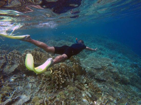 Острова Дераван, Индонезия: clear blue water