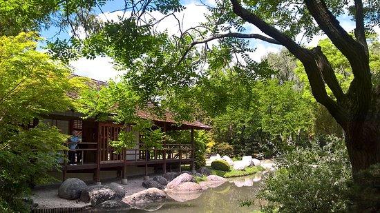 Piccolo angolo di tranquillit picture of jardin for Jardin japonais toulouse