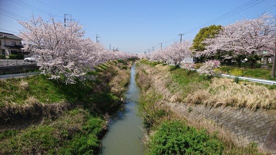 Yanagawa Park