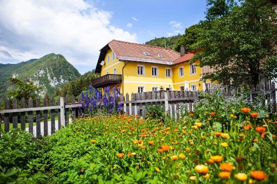 Arlitscherhof