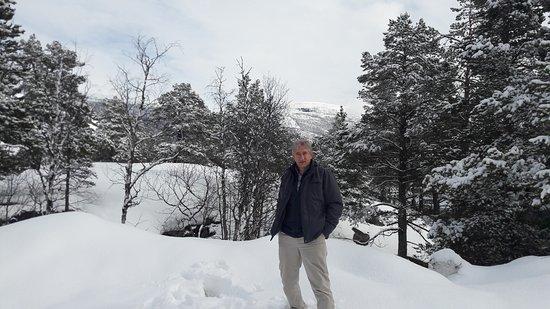 Bjorli, Norge: 20170413_123831_large.jpg