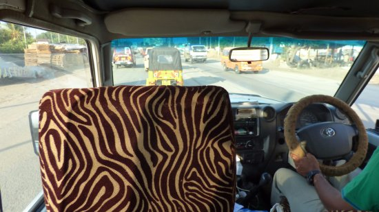 F. King Tours and Safaris - Day Tours: View from my seat