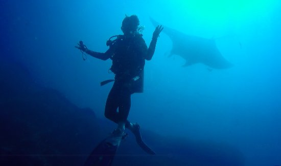Drake Bay, Costa Rica: Manta Pacífica