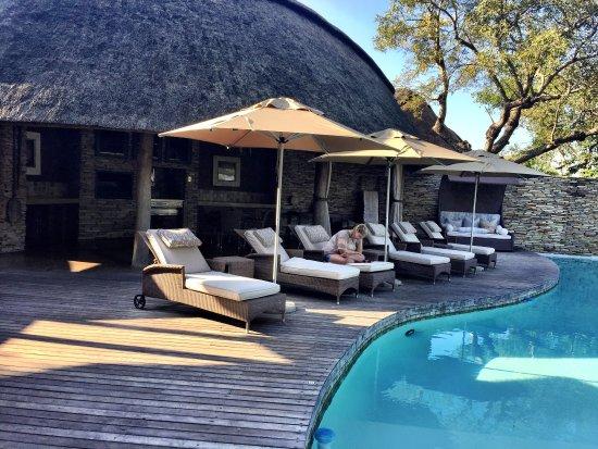 Timbavati Private Nature Reserve, Sør-Afrika: photo0.jpg