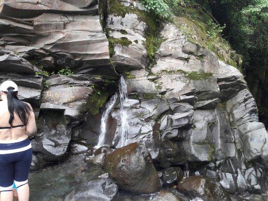 Provincia di Chiriqui, Panama/Panamá: Macho Monte,  Chiriqui