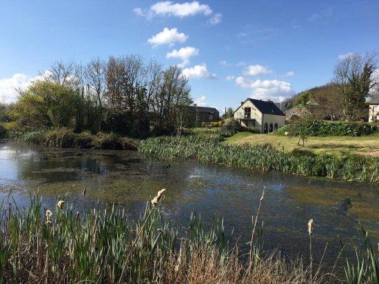 Polhilsa Farm: photo0.jpg