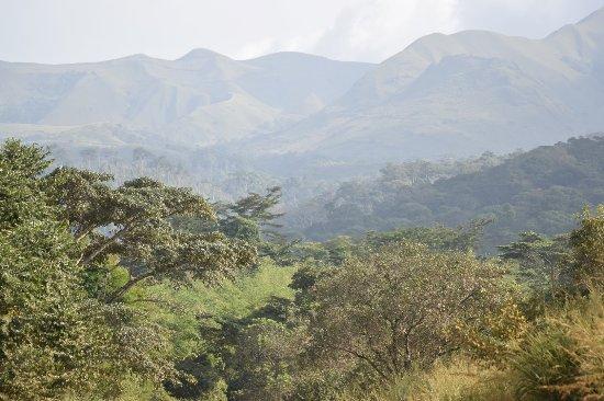Guinea: Mount Nimba
