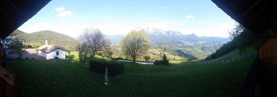 Naturhotel Wieserhof: Vista dalla camera