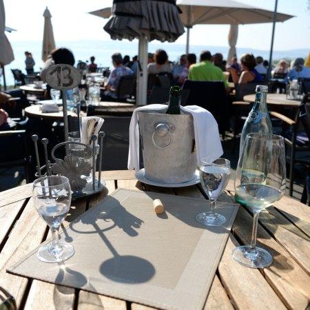 Pilgerhof-Rebmannshof: Blick über herrlichem Wein auf den sonnigen Bodensee