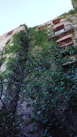 Desayuno espectacular foto di hotel el jardin vertical - El jardin vertical ...