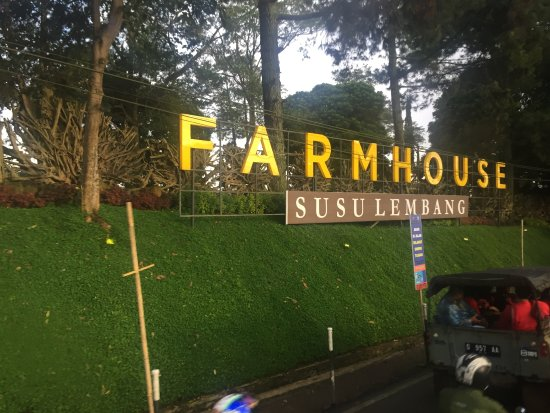 Farmhouse Bandung: Farmhouse Susu Lembang