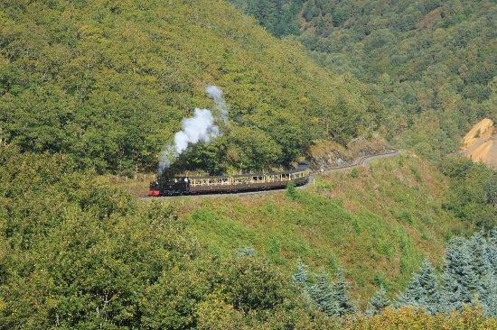 Chancery, UK: The steam train on its journey to Devil's Bridge through the beautiful Rheidol Valley.