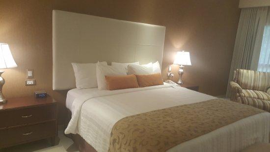 Los Tajibos Hotel & Convention Center afbeelding