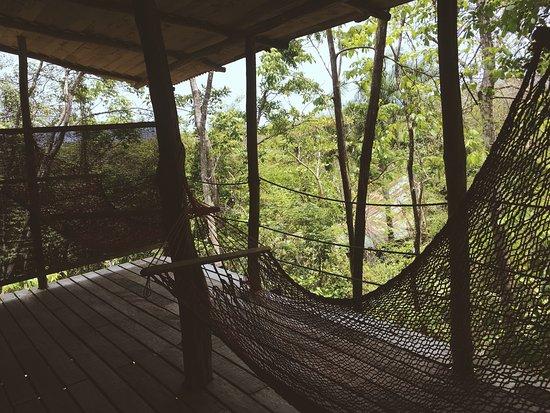 Blue Jay Lodge: Perfecto para descansar! Rodeado de la naturaleza, el desayuno típico muy bueno. Sobretodo los h