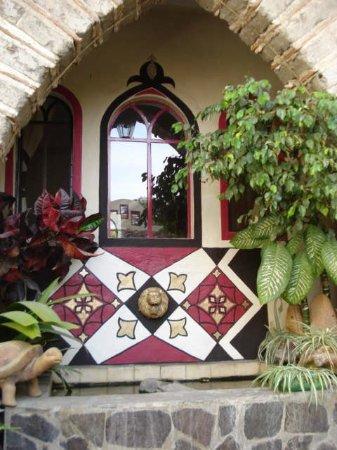 Hotel Casa Blanca: Resident turtles luxury accommodations ;)