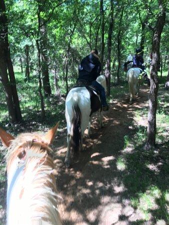 Marshall Creek Ranch : Intermediate-level trail ride through the woods