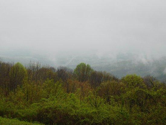 Фронт-Ройал, Вирджиния: DSCN1871_large.jpg