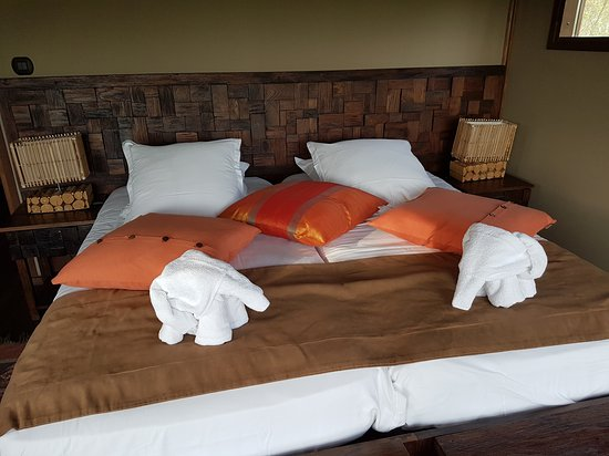 les lodges du pal photo de les lodges du pal dompierre sur besbre tripadvisor. Black Bedroom Furniture Sets. Home Design Ideas