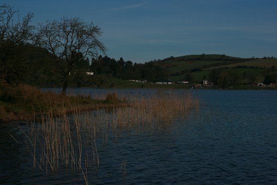 Collinstown, Ireland: Our morning walk on Lough Bane.
