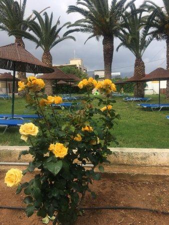 Marilena Hotel: photo1.jpg