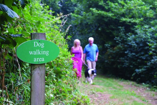 Dogs are welcome at Churchwood Valley, they even have their